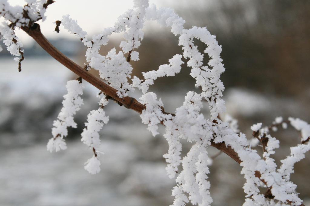 Ast Winterzeit